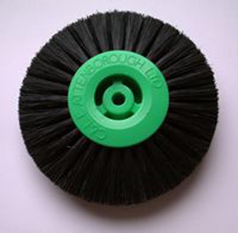 Attenborough Black Brush 3-Row Converged 73mm
