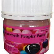 Ainsworth Prophylaxis Paste - New Bubblegum Flavour - 200g